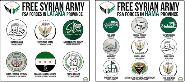 FSA groups flags