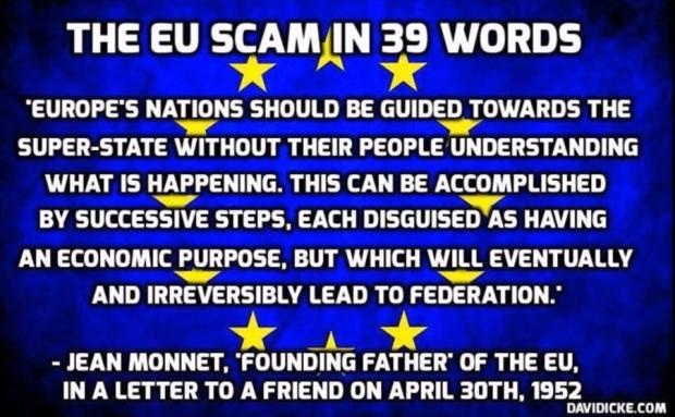 EU jean monnet